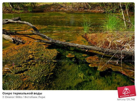 Озеро термальной воды, фото № 31740, снято 7 января 2007 г. (c) Eleanor Wilks / Фотобанк Лори