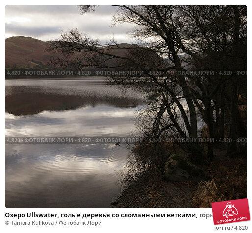 Озеро Ullswater, голые деревья со сломанными ветками, горы на заднем плане, фото № 4820, снято 25 декабря 2005 г. (c) Tamara Kulikova / Фотобанк Лори