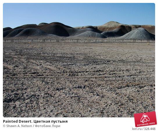 Painted Desert. Цветная пустыня, фото № 328448, снято 29 мая 2008 г. (c) Shawn A. Nelson / Фотобанк Лори