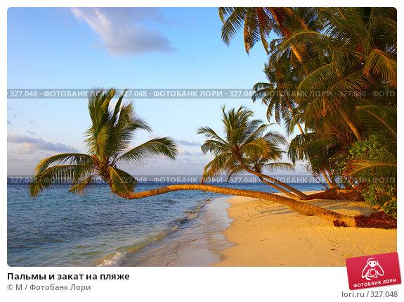 Пальмы и закат на пляже, фото № 327048, снято 28 июня 2017 г. (c) Михаил / Фотобанк Лори