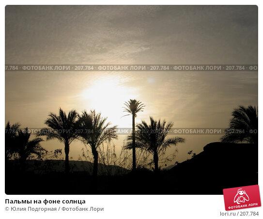 Пальмы на фоне солнца, фото № 207784, снято 11 марта 2007 г. (c) Юлия Селезнева / Фотобанк Лори
