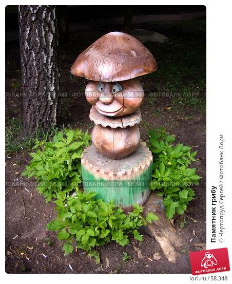 Памятник грибу, фото № 58348, снято 4 июля 2007 г. (c) Чертопруд Сергей / Фотобанк Лори