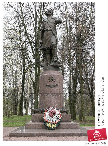 Купить «Памятник Петру 1», фото № 255528, снято 17 апреля 2008 г. (c) Parmenov Pavel / Фотобанк Лори