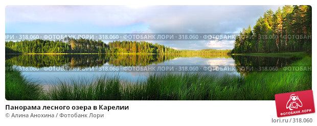 Панорама лесного озера в Карелии, фото № 318060, снято 22 июля 2017 г. (c) Алина Анохина / Фотобанк Лори