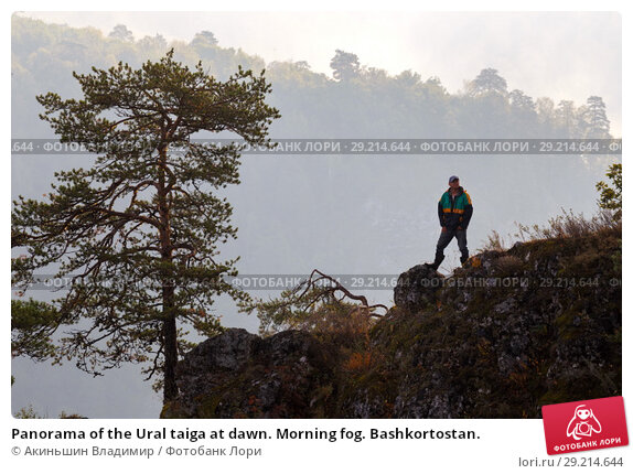 Купить «Panorama of the Ural taiga at dawn. Morning fog. Bashkortostan.», фото № 29214644, снято 9 сентября 2017 г. (c) Акиньшин Владимир / Фотобанк Лори