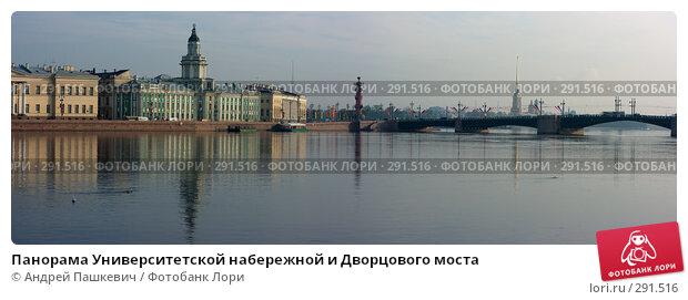 Купить «Панорама Университетской набережной и Дворцового моста», фото № 291516, снято 18 декабря 2017 г. (c) Андрей Пашкевич / Фотобанк Лори