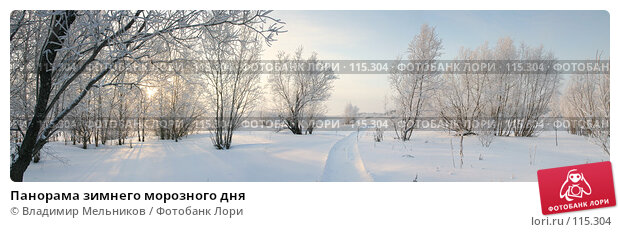 Панорама зимнего морозного дня, фото № 115304, снято 20 августа 2017 г. (c) Владимир Мельников / Фотобанк Лори