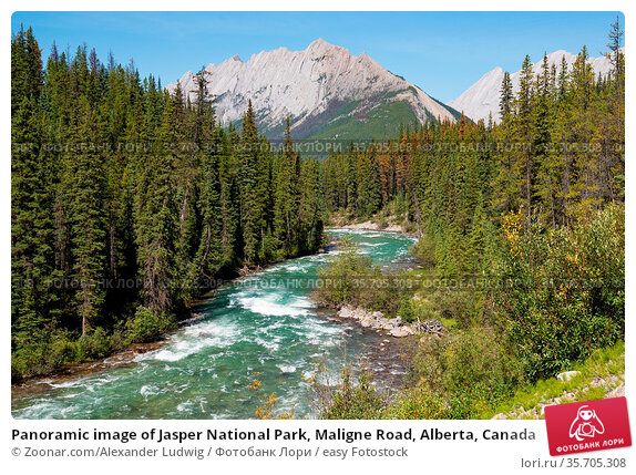 Panoramic image of Jasper National Park, Maligne Road, Alberta, Canada. Стоковое фото, фотограф Zoonar.com/Alexander Ludwig / easy Fotostock / Фотобанк Лори