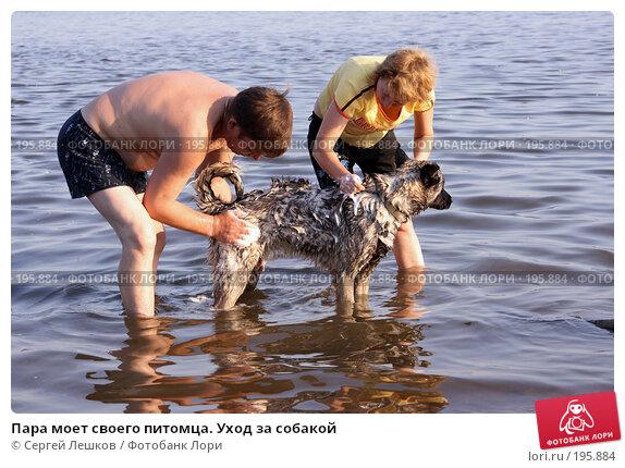 Пара моет своего питомца. Уход за собакой, фото № 195884, снято 10 июля 2007 г. (c) Сергей Лешков / Фотобанк Лори
