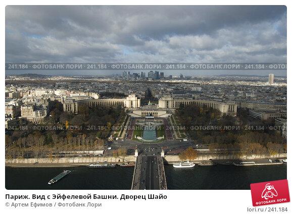 Париж. Вид с Эйфелевой Башни. Дворец Шайо, фото № 241184, снято 11 ноября 2007 г. (c) Артем Ефимов / Фотобанк Лори