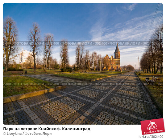 Купить «Парк на острове Кнайпхоф. Калининград», фото № 302400, снято 30 декабря 2007 г. (c) Liseykina / Фотобанк Лори