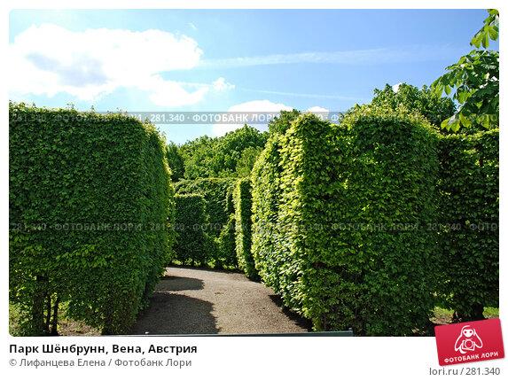 Купить «Парк Шёнбрунн, Вена, Австрия», фото № 281340, снято 6 мая 2008 г. (c) Лифанцева Елена / Фотобанк Лори
