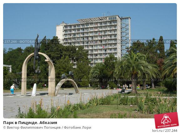 Купить «Парк в Пицунде. Абхазия», фото № 237244, снято 23 июля 2005 г. (c) Виктор Филиппович Погонцев / Фотобанк Лори
