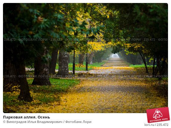 Парковая аллея. Осень, фото № 235472, снято 27 октября 2007 г. (c) Виноградов Илья Владимирович / Фотобанк Лори
