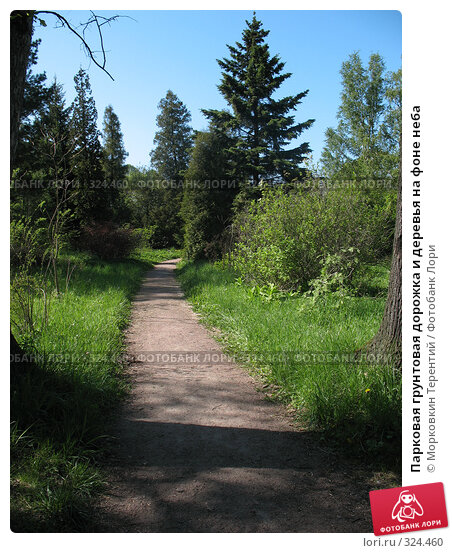 Парковая грунтовая дорожка и деревья на фоне неба, фото № 324460, снято 17 мая 2008 г. (c) Морковкин Терентий / Фотобанк Лори