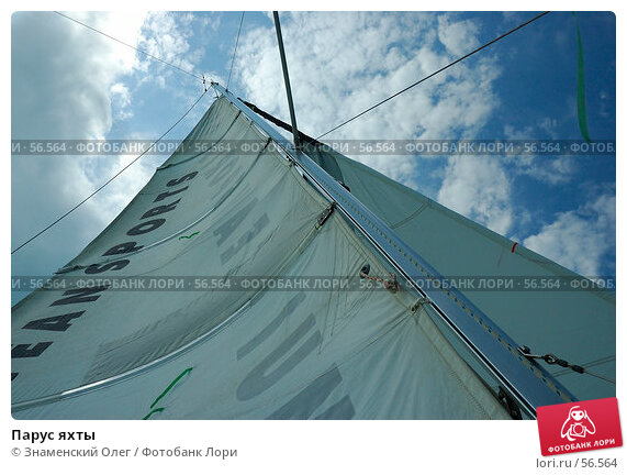 Купить «Парус яхты», эксклюзивное фото № 56564, снято 3 марта 2006 г. (c) Знаменский Олег / Фотобанк Лори