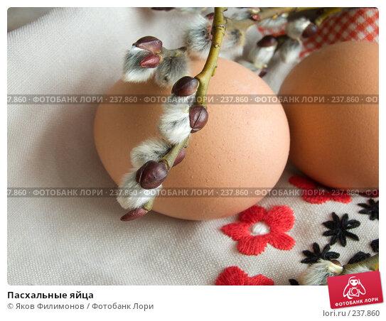 Купить «Пасхальные яйца», фото № 237860, снято 21 марта 2018 г. (c) Яков Филимонов / Фотобанк Лори