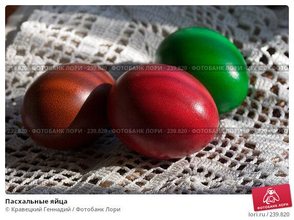 Пасхальные яйца, фото № 239820, снято 24 января 2017 г. (c) Кравецкий Геннадий / Фотобанк Лори
