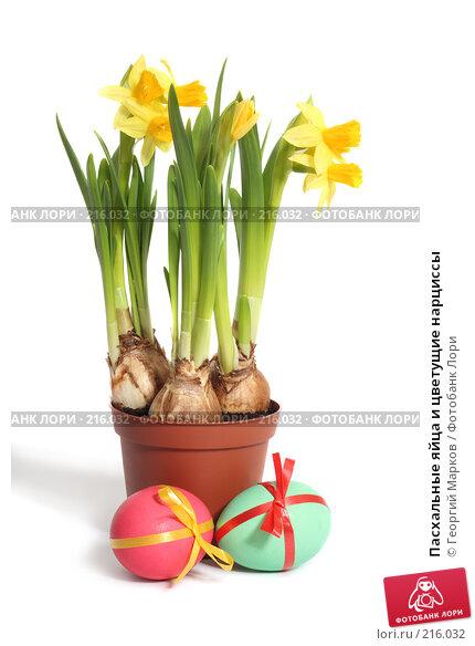 Купить «Пасхальные яйца и цветущие нарциссы», фото № 216032, снято 2 марта 2008 г. (c) Георгий Марков / Фотобанк Лори