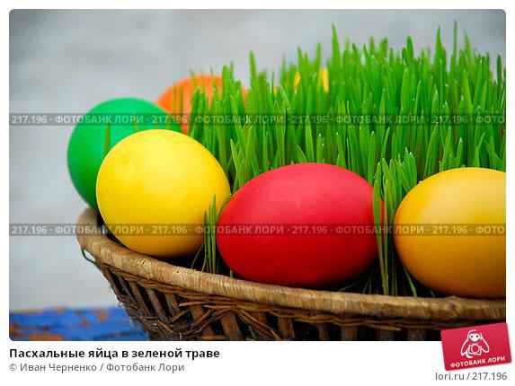 Пасхальные яйца в зеленой траве, фото № 217196, снято 7 апреля 2007 г. (c) Иван Черненко / Фотобанк Лори