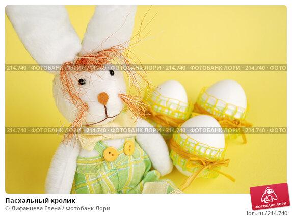 Пасхальный кролик, фото № 214740, снято 2 марта 2008 г. (c) Лифанцева Елена / Фотобанк Лори