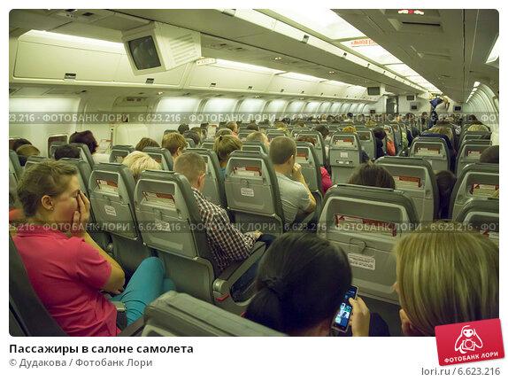 прикольные картинки полета в самолете для пассажиров когда нашла, упорством