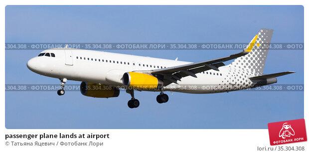 passenger plane lands at airport. Стоковое фото, фотограф Татьяна Яцевич / Фотобанк Лори