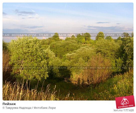 Пейзаж, фото № 177620, снято 16 августа 2006 г. (c) Тавруева Надежда / Фотобанк Лори