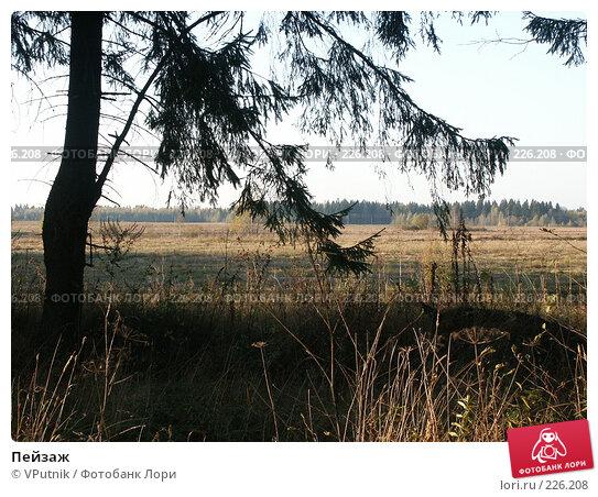 Купить «Пейзаж», фото № 226208, снято 1 октября 2005 г. (c) VPutnik / Фотобанк Лори