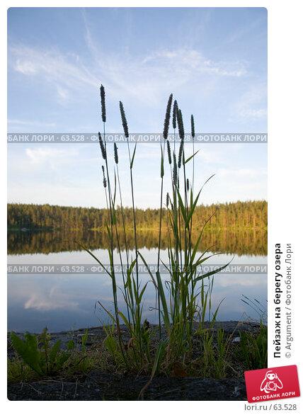 Купить «Пейзаж на берегу озера», фото № 63528, снято 4 июля 2007 г. (c) Argument / Фотобанк Лори