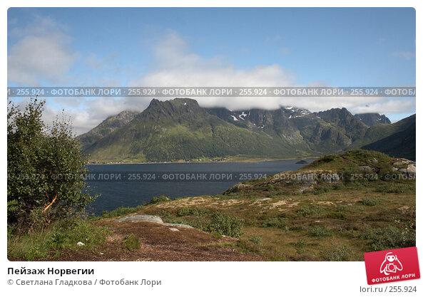 Пейзаж Норвегии, фото № 255924, снято 7 августа 2005 г. (c) Cветлана Гладкова / Фотобанк Лори