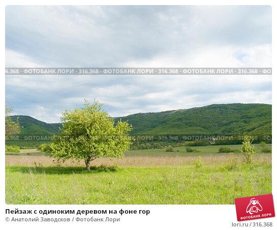 Пейзаж с одиноким деревом на фоне гор, фото № 316368, снято 11 мая 2005 г. (c) Анатолий Заводсков / Фотобанк Лори