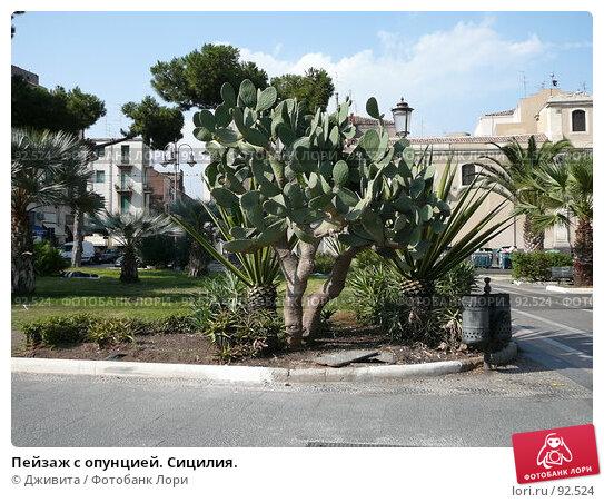 Купить «Пейзаж с опунцией. Сицилия.», фото № 92524, снято 15 сентября 2007 г. (c) Дживита / Фотобанк Лори
