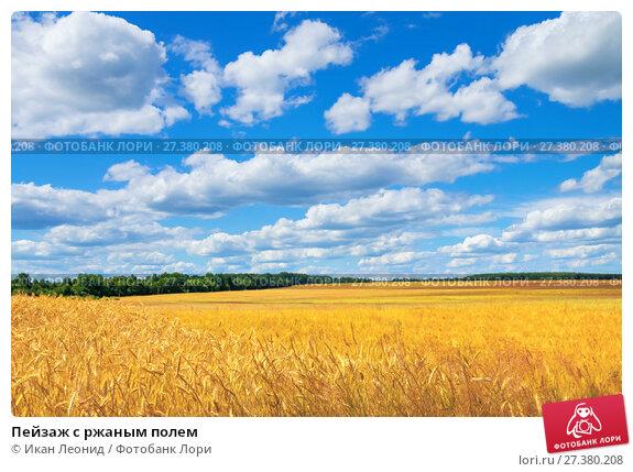 Купить «Пейзаж с ржаным полем», фото № 27380208, снято 22 июля 2017 г. (c) Икан Леонид / Фотобанк Лори