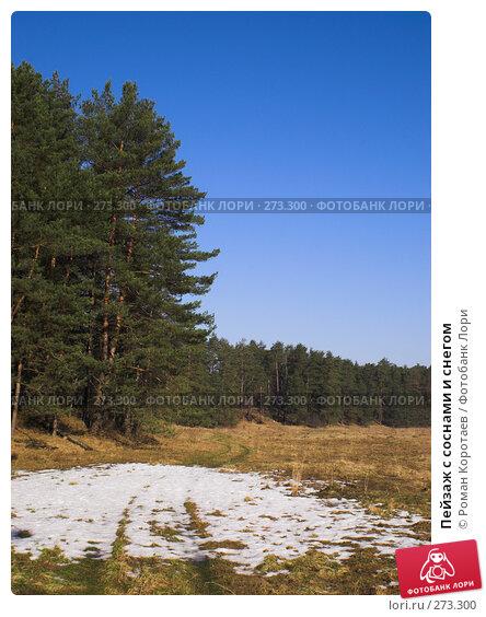 Купить «Пейзаж с соснами и снегом», фото № 273300, снято 24 марта 2007 г. (c) Роман Коротаев / Фотобанк Лори
