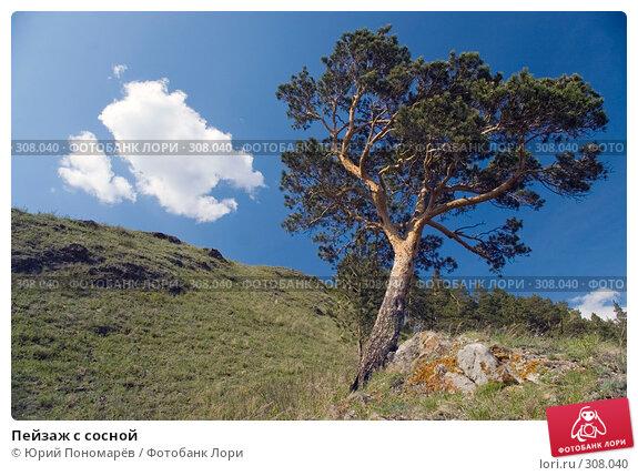 Пейзаж с сосной, фото № 308040, снято 19 мая 2008 г. (c) Юрий Пономарёв / Фотобанк Лори
