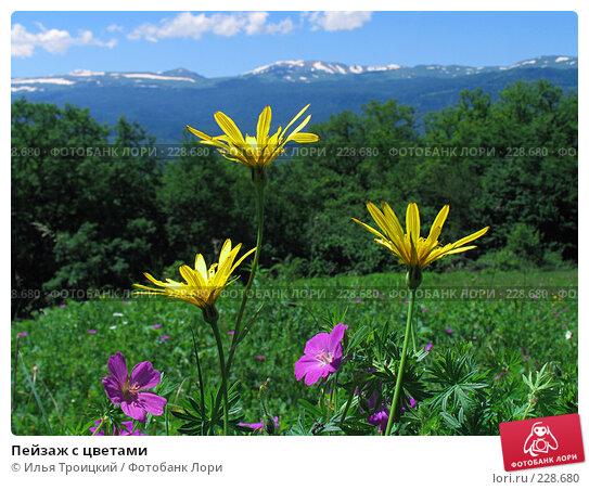Купить «Пейзаж с цветами», фото № 228680, снято 8 июня 2005 г. (c) Илья Троицкий / Фотобанк Лори