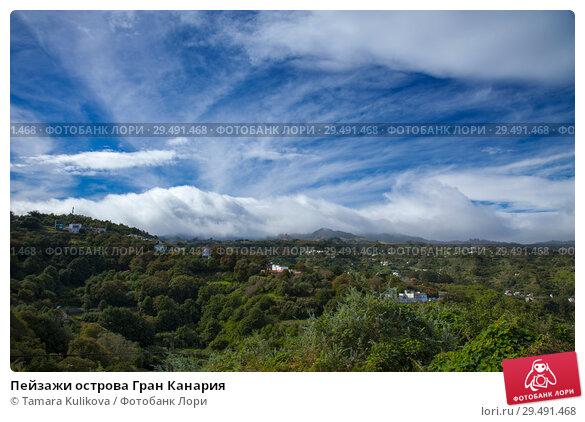 Купить «Пейзажи острова Гран Канария», фото № 29491468, снято 17 ноября 2018 г. (c) Tamara Kulikova / Фотобанк Лори
