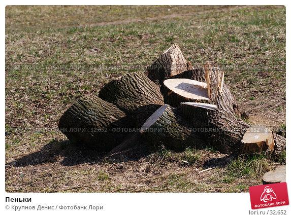 Пеньки, фото № 32652, снято 14 марта 2007 г. (c) Крупнов Денис / Фотобанк Лори