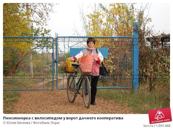 Купить «Пенсионерка с велосипедом у ворот дачного кооператива», фото № 1591668, снято 16 октября 2008 г. (c) Юлия Евсеева / Фотобанк Лори