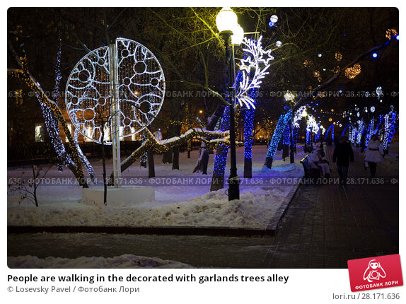 Купить «People are walking in the decorated with garlands trees alley», фото № 28171636, снято 1 января 2015 г. (c) Losevsky Pavel / Фотобанк Лори