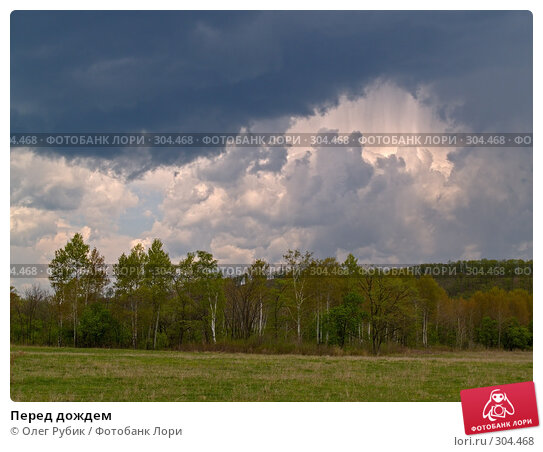 Перед дождем, фото № 304468, снято 8 мая 2008 г. (c) Олег Рубик / Фотобанк Лори