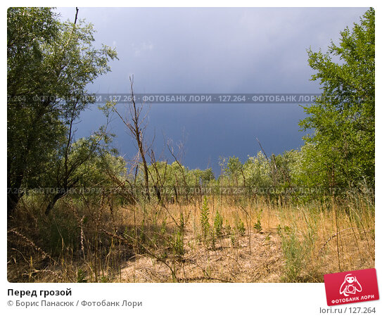 Перед грозой, фото № 127264, снято 25 мая 2007 г. (c) Борис Панасюк / Фотобанк Лори