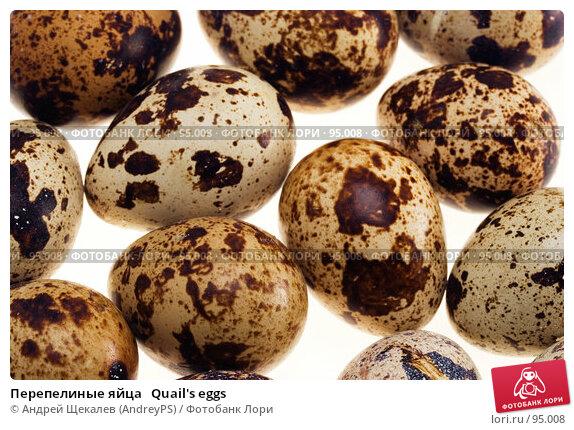 Перепелиные яйца   Quail's eggs, фото № 95008, снято 27 января 2007 г. (c) Андрей Щекалев (AndreyPS) / Фотобанк Лори
