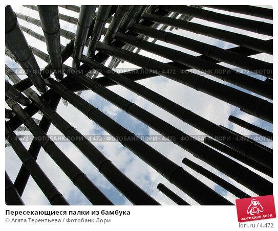 Пересекающиеся палки из бамбука, фото № 4472, снято 21 мая 2006 г. (c) Агата Терентьева / Фотобанк Лори
