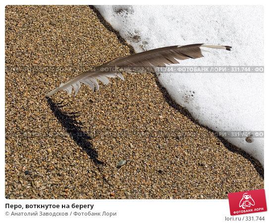 Перо, воткнутое на берегу, фото № 331744, снято 19 сентября 2007 г. (c) Анатолий Заводсков / Фотобанк Лори
