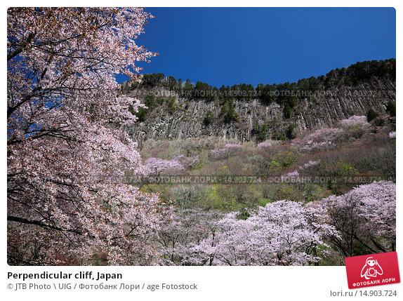 Купить «Perpendicular cliff, Japan», фото № 14903724, снято 19 июня 2018 г. (c) age Fotostock / Фотобанк Лори