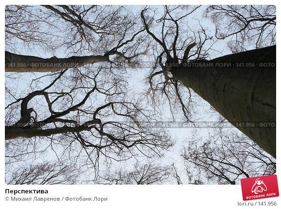 Перспектива, фото № 141956, снято 28 декабря 2005 г. (c) Михаил Лавренов / Фотобанк Лори