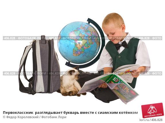 Купить «Первоклассник  разглядывает букварь вместе с сиамским котёнком», фото № 406828, снято 16 августа 2008 г. (c) Федор Королевский / Фотобанк Лори