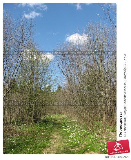 Первоцветы, фото № 307268, снято 27 апреля 2008 г. (c) Успенская Лидия Валентиновна / Фотобанк Лори
